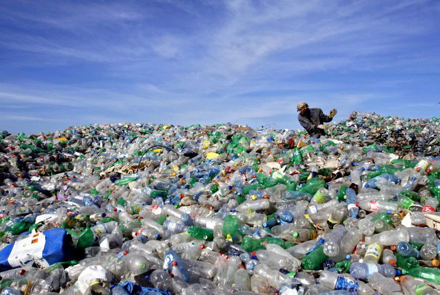 世界海洋日 亞洲國誓打擊海洋污染