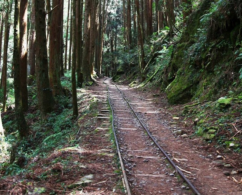 Taiwan's Chiayi Forest District Office is organizing a three-day working holiday activity to restore Alishan Tefuye Historical Trail, with only 30 pos...