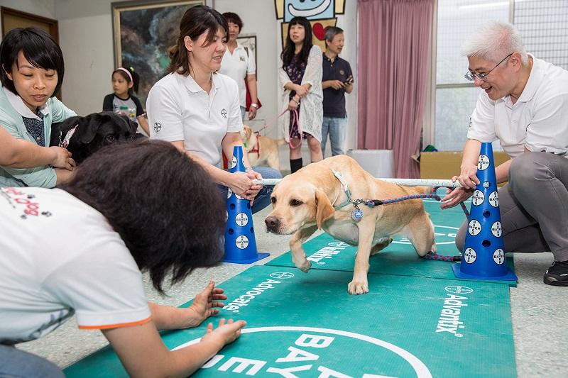 狗的退化速度比人類快 體適能訓練助狗兒回春