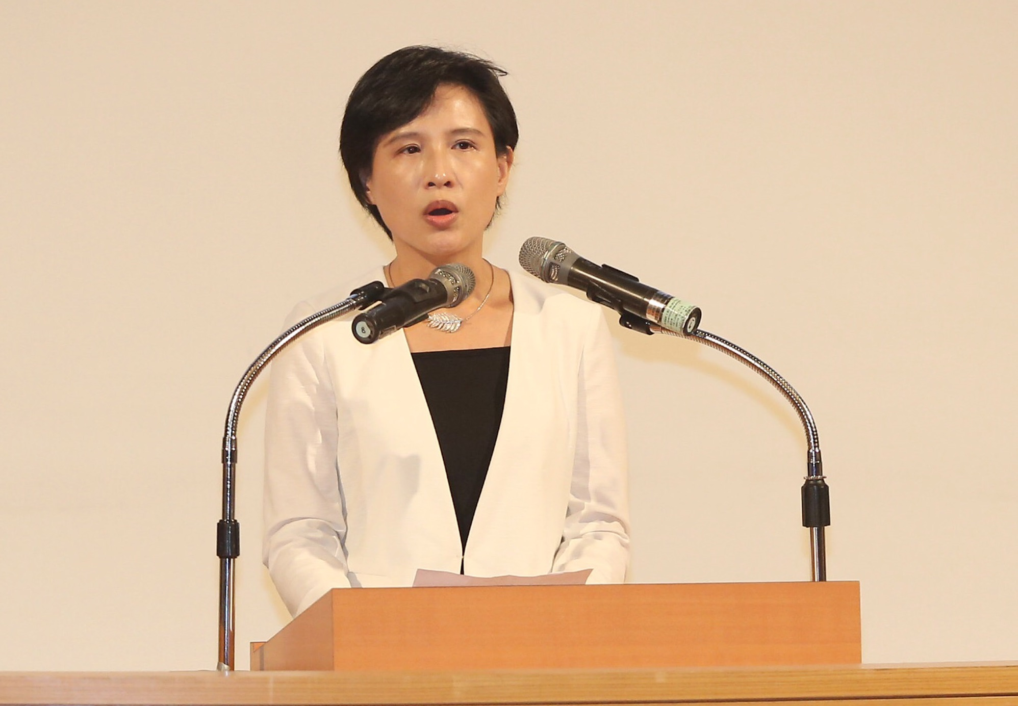 The Ministry of Culture will harness Taiwan's soft power