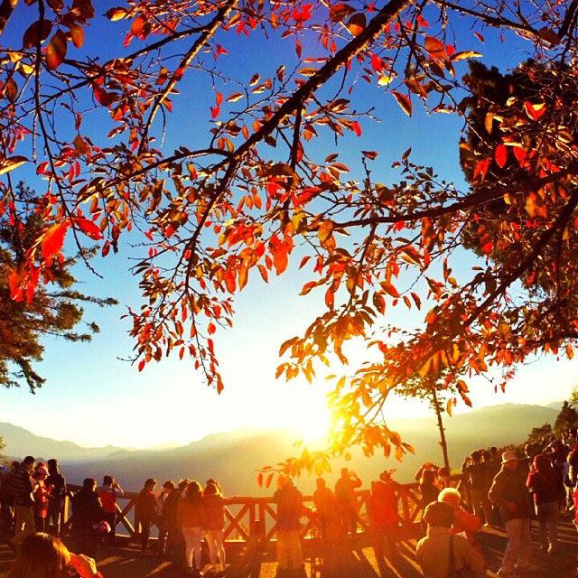 Alishan Fall Sunrise