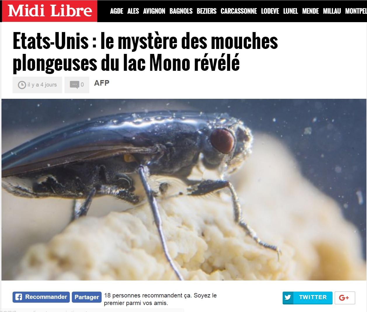 圖片擷取自Midi Libre 網頁