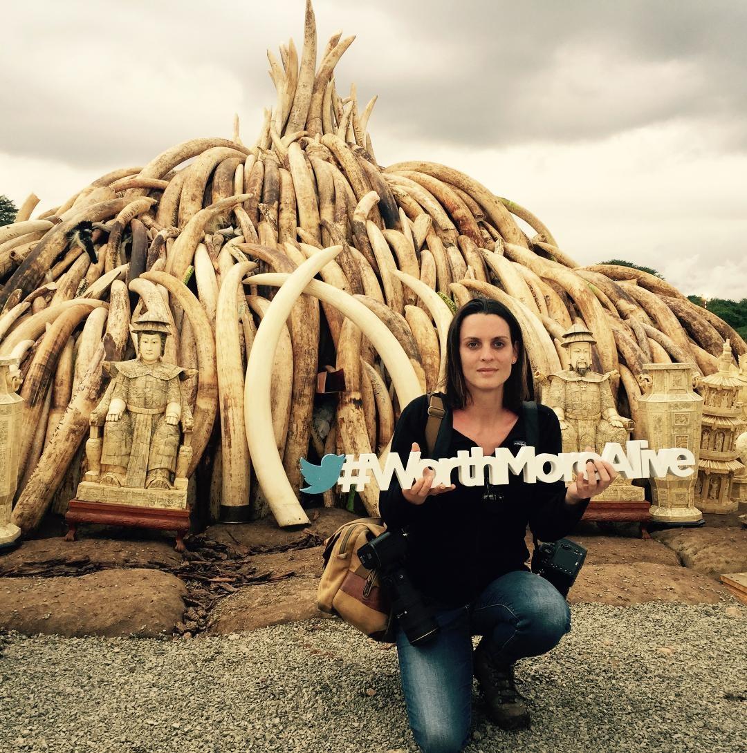Kate Brooks希望透過《The Last Animals》喚起世人對野生動物的關注,沒有買賣就沒有殺害。 (照片由WildAid野...