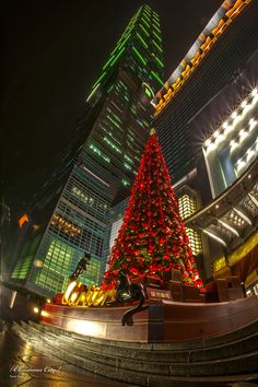 Best things to do in Taiwan over Christmas