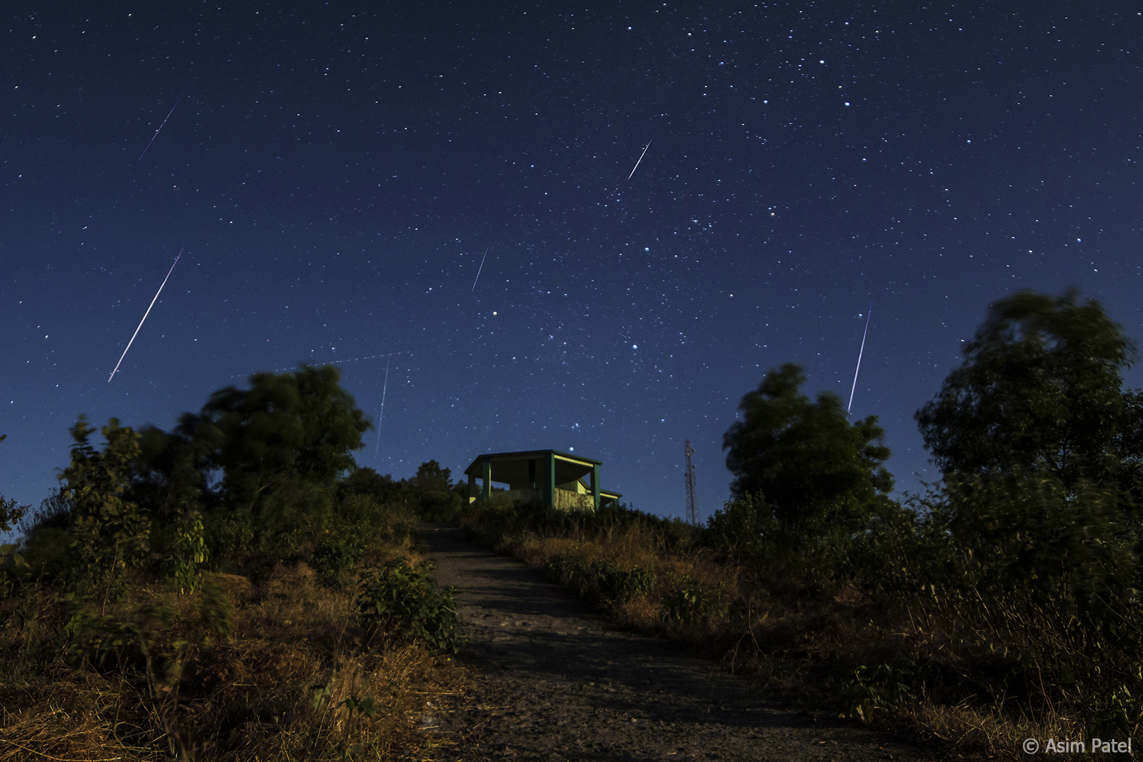 Skywatchers can see this year's best meteor shower next week