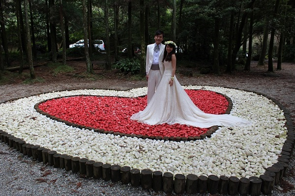The Black Forest is a hot pick for photo-taking by newlyweds or couples (photo courtesy of GEO)