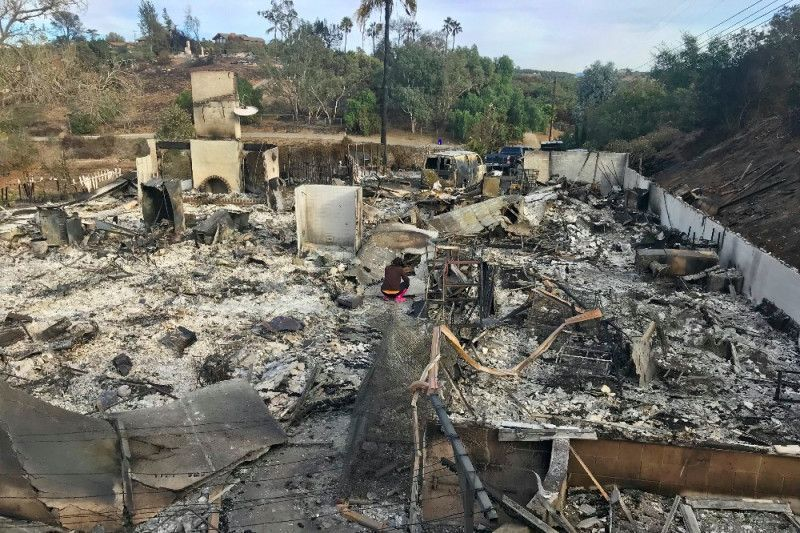Remains of the Yang Family aviary, in California (Image from the Family's Gofundme page)