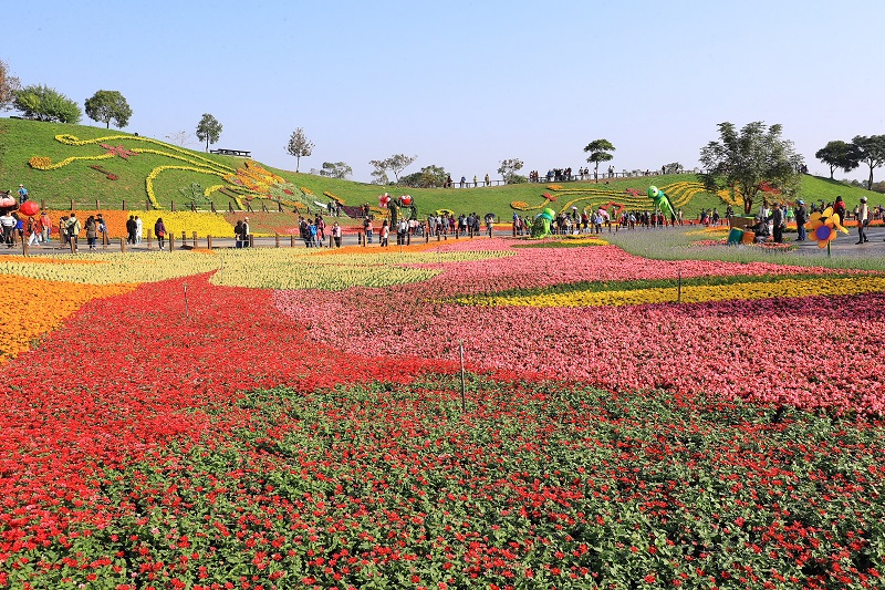 Open from 8:30 a.m. to 4:30 p.m. daily during the exhibition period, the festival will highlight the theme of 'Voice of Flowers'