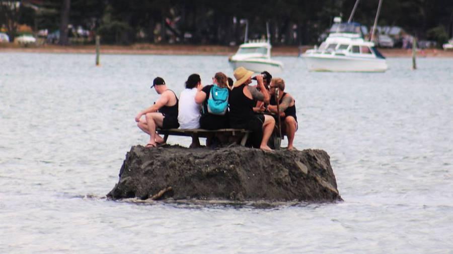 圖片取自NZ Herald。