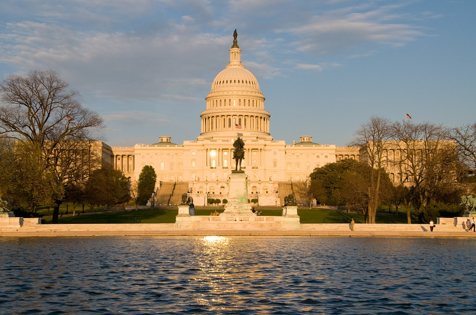 US Capitol (Image from pixabay user Pogo_mm)