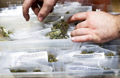 根據最新研究,醫療用大麻法規的引進大幅降低了墨西哥鄰近美國州的暴力犯罪率。(圖片來源:AP)