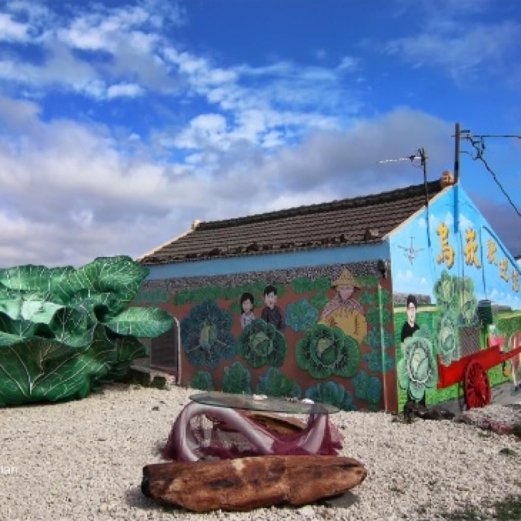 圖為澎湖烏崁社區大型高麗菜裝置藝術。(照片由劉武漢先生提供)