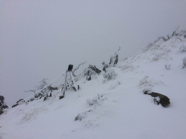 30 cm of snow on Xueshan Feb. 1.