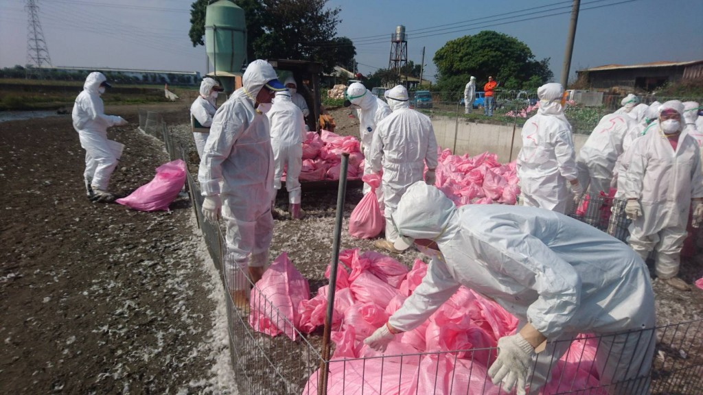 圖片來源:雲林縣動植物防疫所。