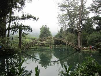 Xitou Skywalk, Xitou (Wikipedia Commons)