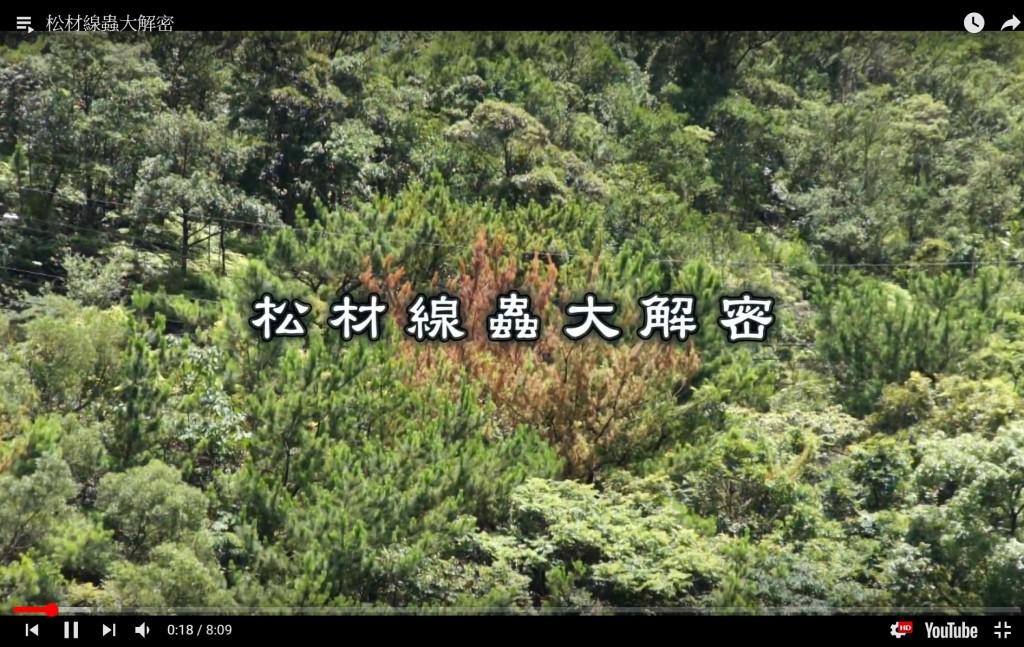 圖片擷取自林業試驗所之「松材線蟲大解密」youtube影片。