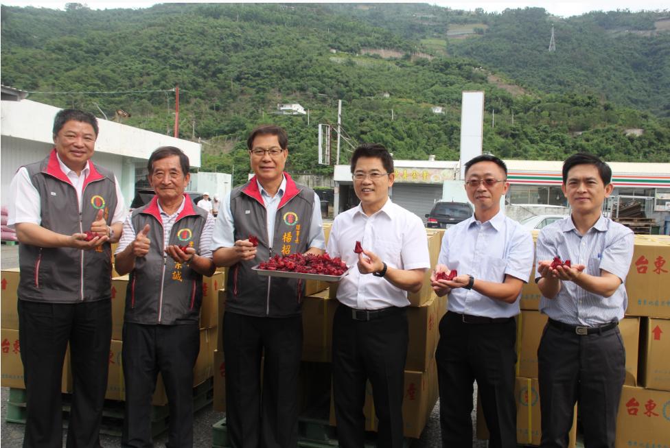 今(22)日,台東農會出口20噸洛神鮮果至日本的南信州菓子工房。