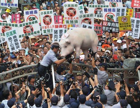Hog farmers protesting against U.S. pork imports in 2016.