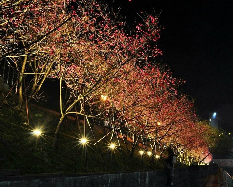(photo credit: Taipei City Government)