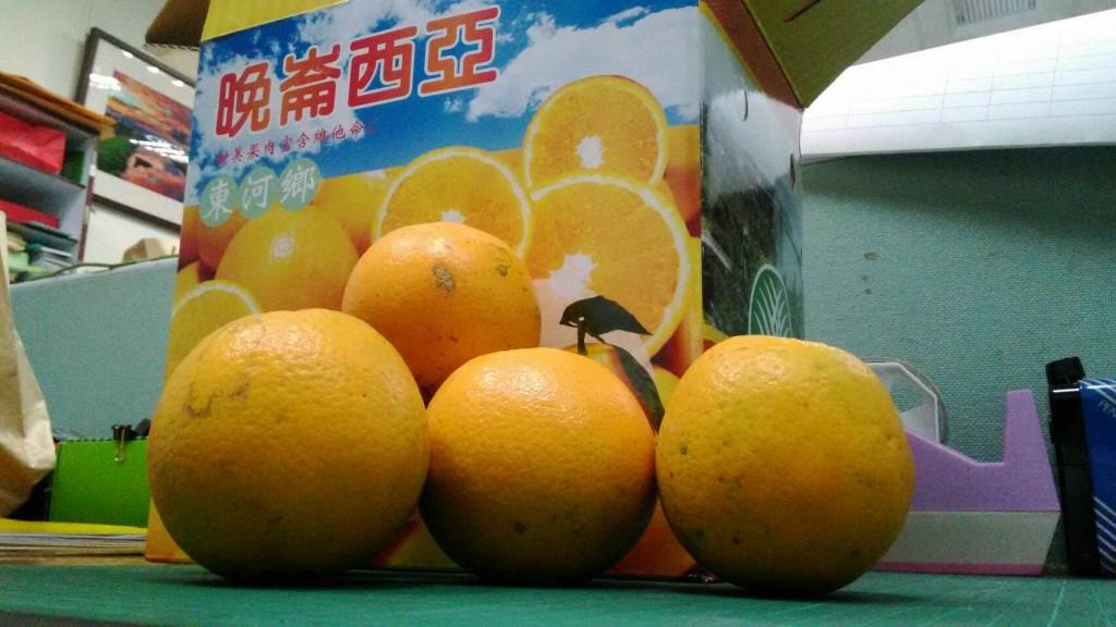 香丁果肉飽滿,香甜多汁,是東河鄉名產(圖片來源:臺東縣政府)