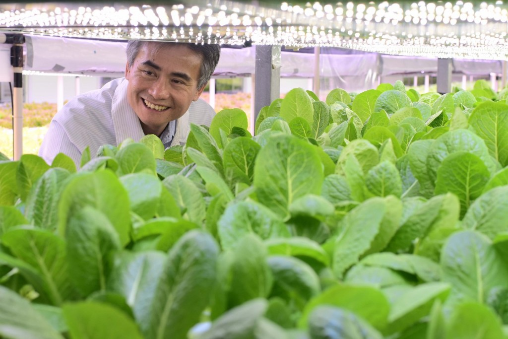 iFarm Chairman Tsai Wen-chin operates the largest indoor farm in Asia. (Image from iFarm website)