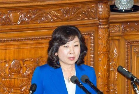 日本總務大臣野田聖子(圖片來源:翻攝自野田聖子臉書)