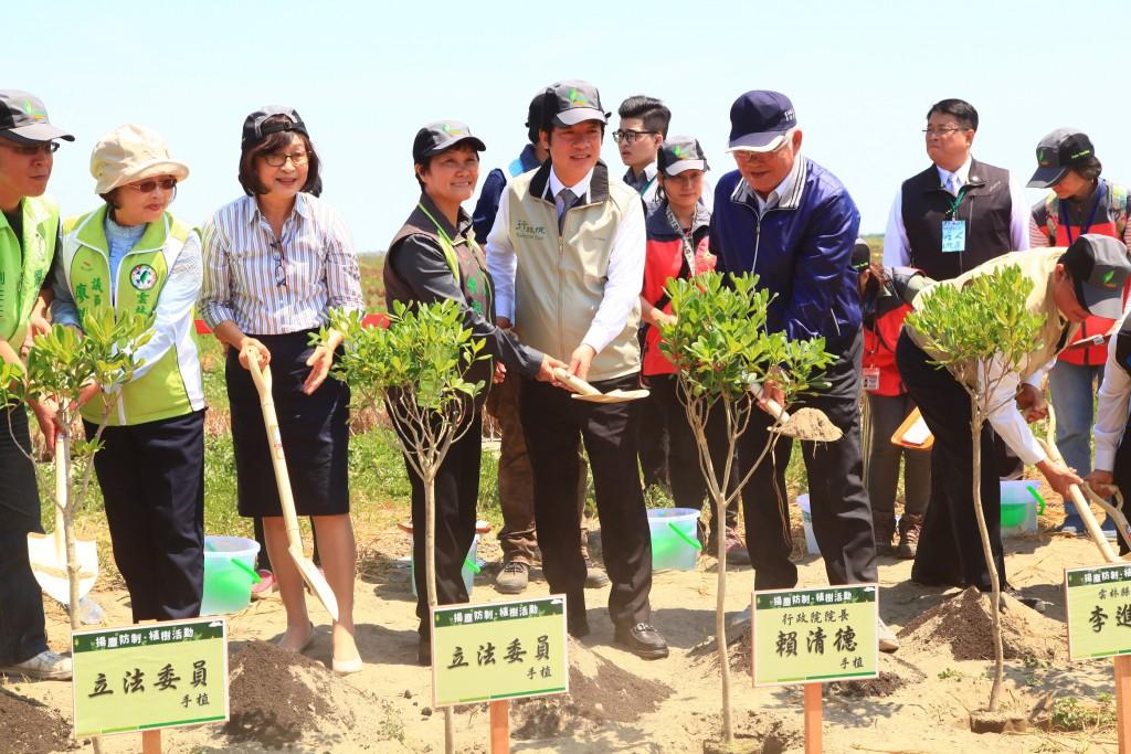 行政院長賴清德種植海桐。(照片由林務局提供)
