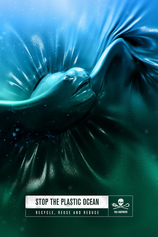 「The Plastic Ocean」中海龜努力從塑膠袋掙札只為求一線生機。(圖片載自Sea Shepherd Global Facebo