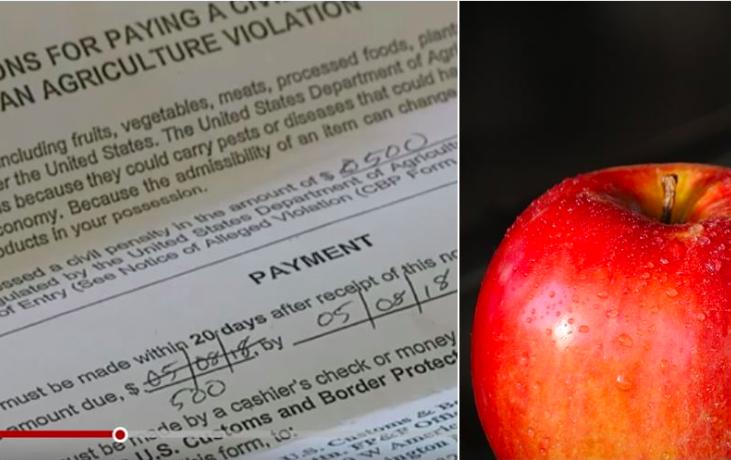 圖片來源:一名婦人搭乘班機從巴黎返美,下機時帶著機上免費招待但沒吃完的蘋果,結果被美國海關搜出,處以500美元罰款。(左圖取自Fox 31