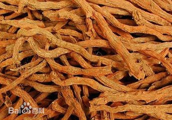 The photo shows the red sage root, also known as Dan-sen (Image credit: Baidu)