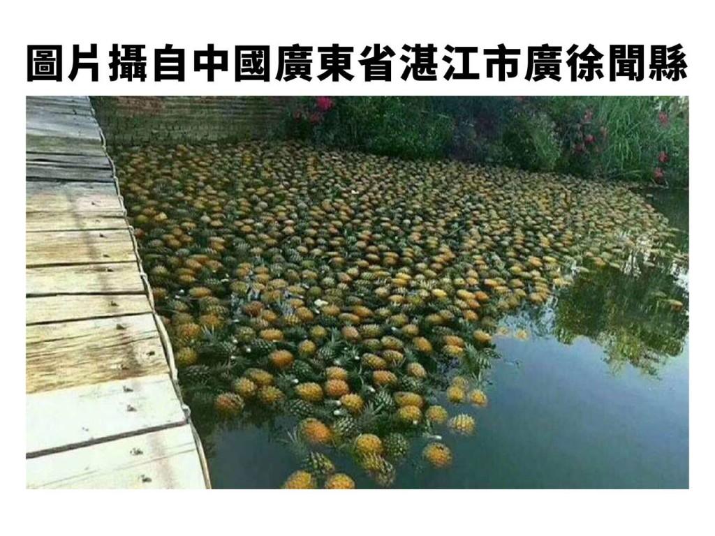 照片由農委會提供