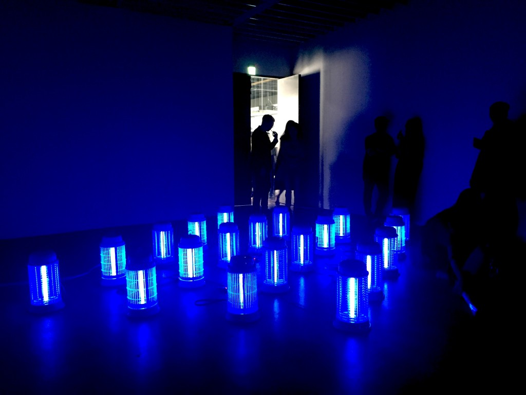 """New media artist turned mosquito lamps into installation work """"The Death of Light"""""""