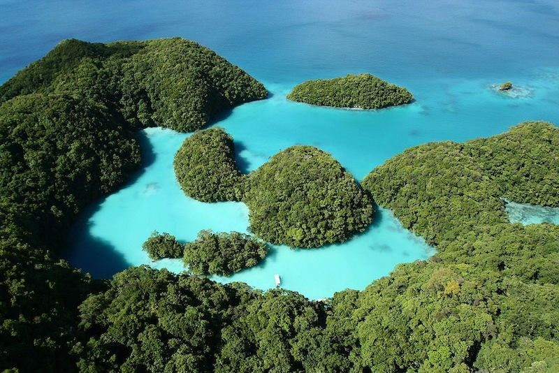 Palau Mily Way, Rock Islands (Image from Palau Dive Adventures)
