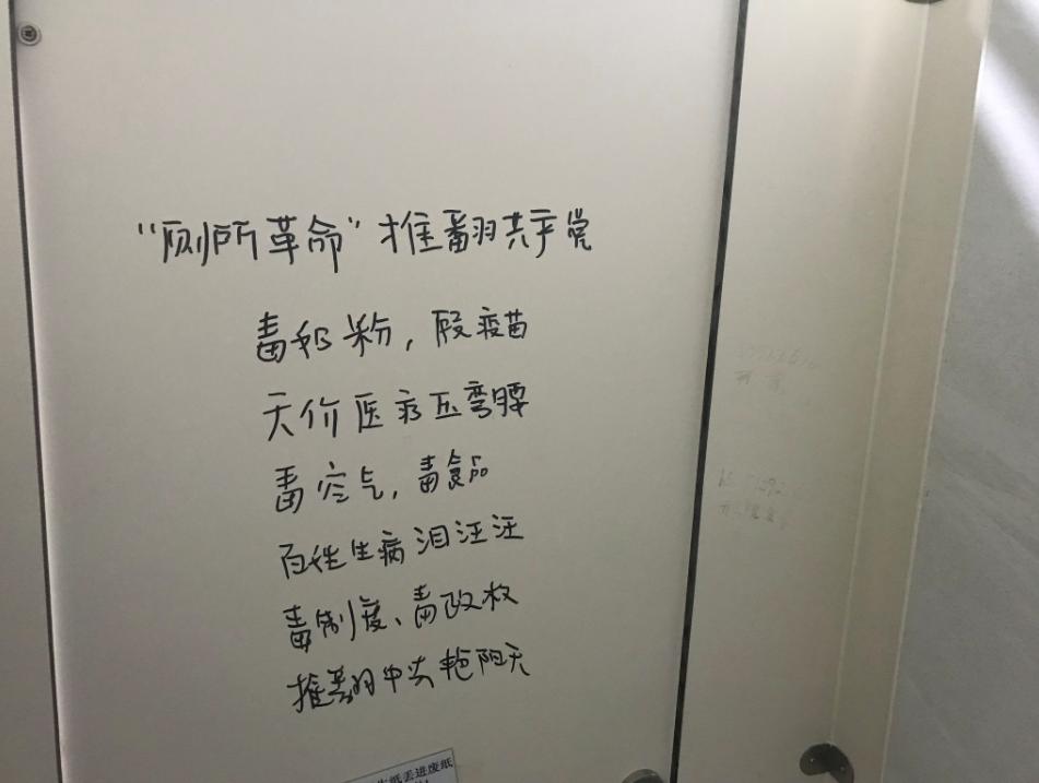 中國廁所革命(翻攝自推特)