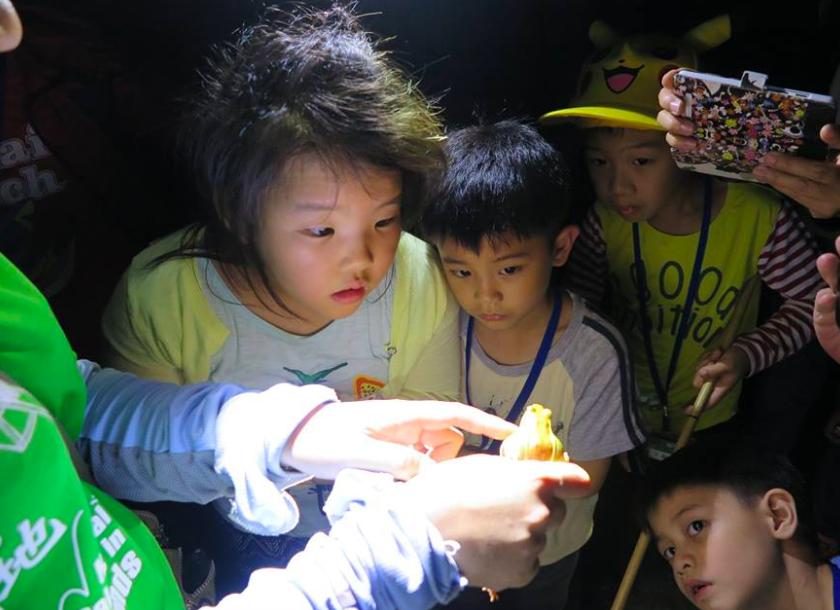 設籍北市南區的國小新二代可參加關渡自然公園一日遊(照片來源:關渡自然公園)
