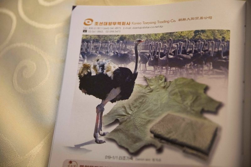 北韓消費指南之鴕鳥皮商品(美聯社)