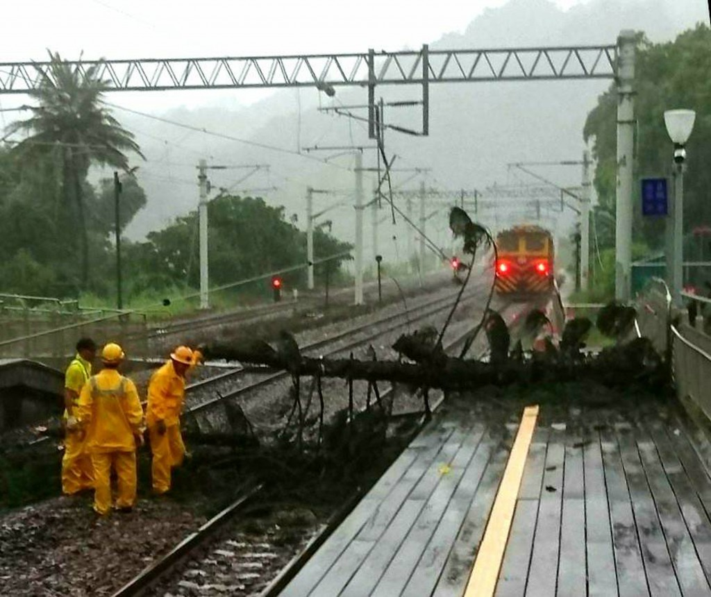 A tree fell on the tracks at Shanli Station in Taitung County.