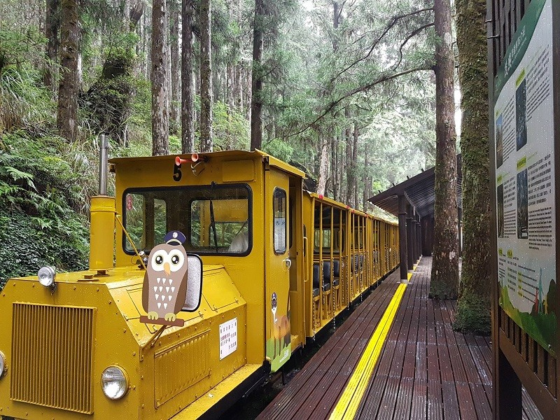 Bong Bong Train on Mt. Taiping (photo from Taipingshan National Forest Recreation Area Facebook account)