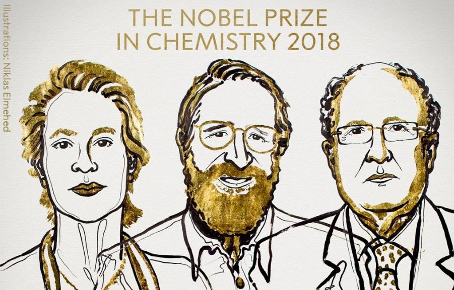 諾貝爾化學獎落美英學者(圖/TheNobelPrize)