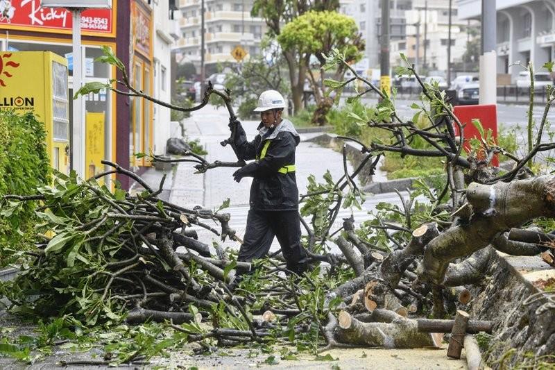 Okinawa after last weekend's Typhoon Trami.