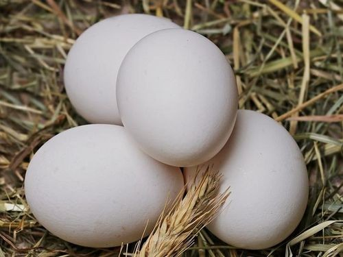 Eggs from Yi Jin King removed from shelves after problems with banned residues and sell-by dates.