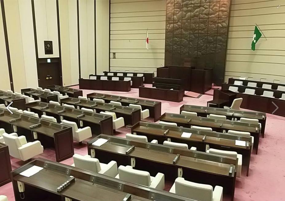 (翻攝自市議會臉書專頁)