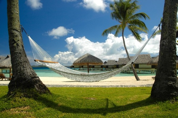 Hammock on beach. (Photo by Pexels.com user Chris McClave)