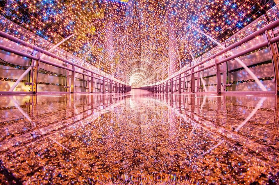 浪漫玫瑰金的「金澄星橋」。(新北旅客粉絲頁)