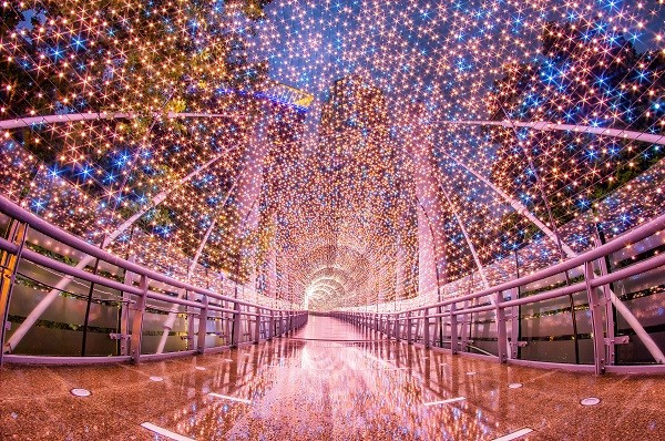 New Taipei's dazzling Christmasland lights up tonight