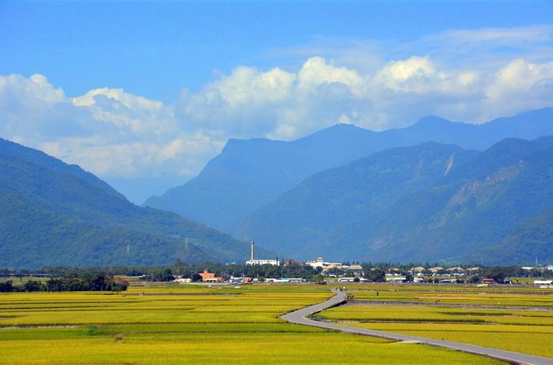 池上稻田(圖/台東觀光旅遊網)