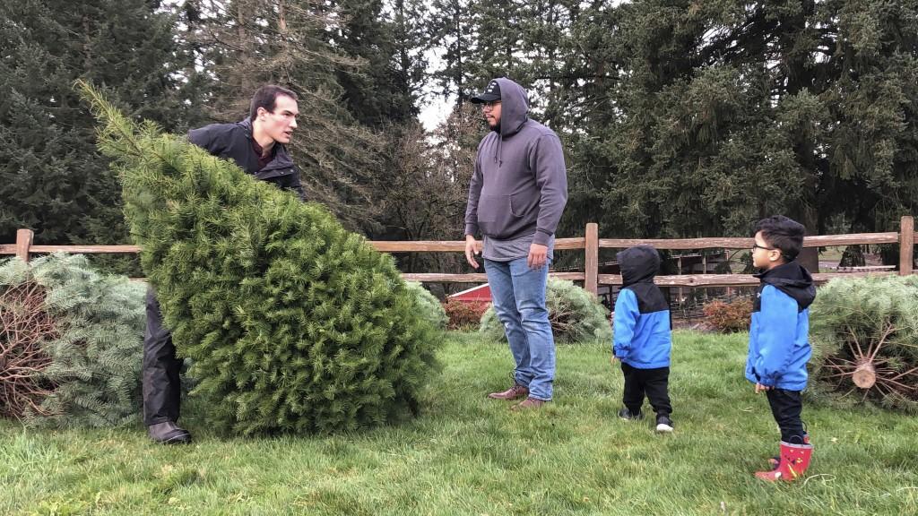 人造樹以假亂真 美聖誕樹業者面臨寒冬