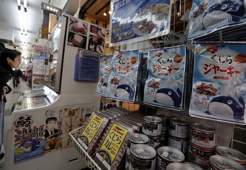 日本退出國際捕鯨委員會 重啟爭議性商業捕鯨