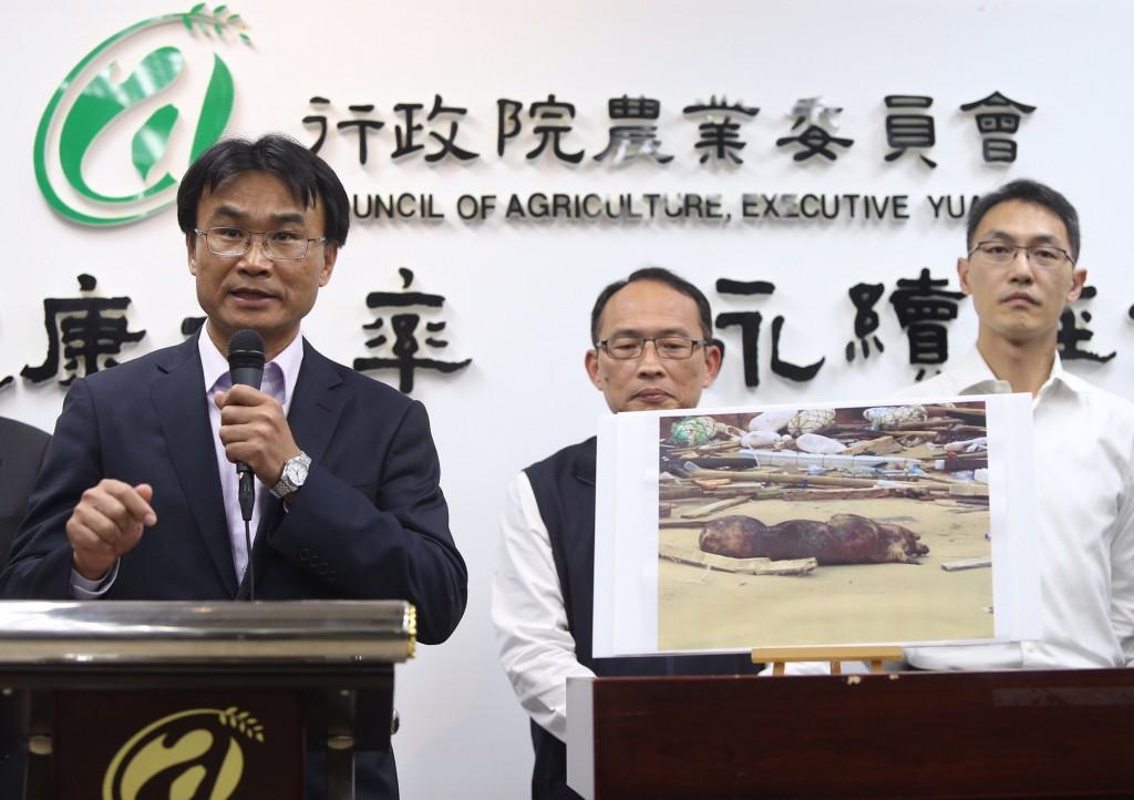 (資料照)農委會代理主委陳吉仲(左)3日在記者會中宣布,4日起暫停金門豬肉運輸至台灣本島兩週,以確保台灣本 島豬肉安全。