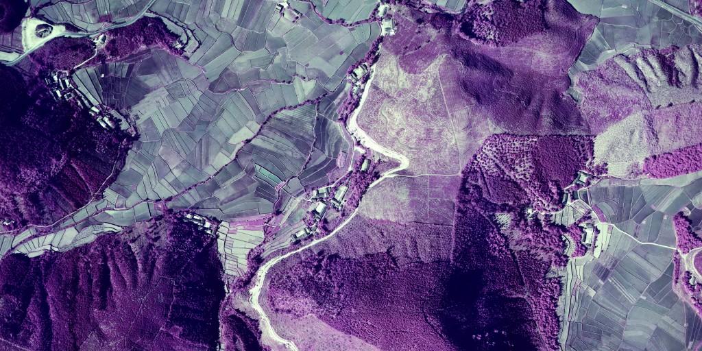 魚池茶園。任務種類:林業遙測 日期:1977/1/19 焦距:208mm 高度:7380ft 航向:S→N。(圖片由農林航空測量所提供)
